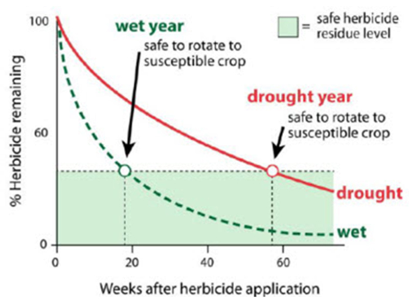 herbicide carryover diagram