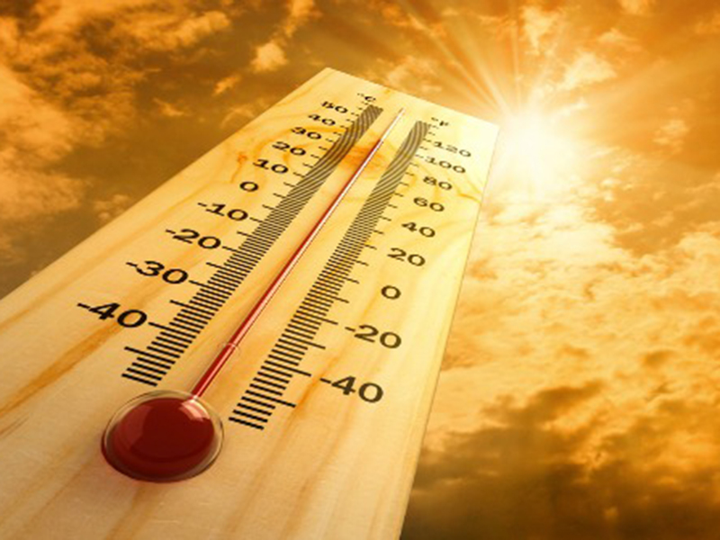 Heat Stress and Yield