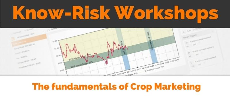 Know-Risk Workshops